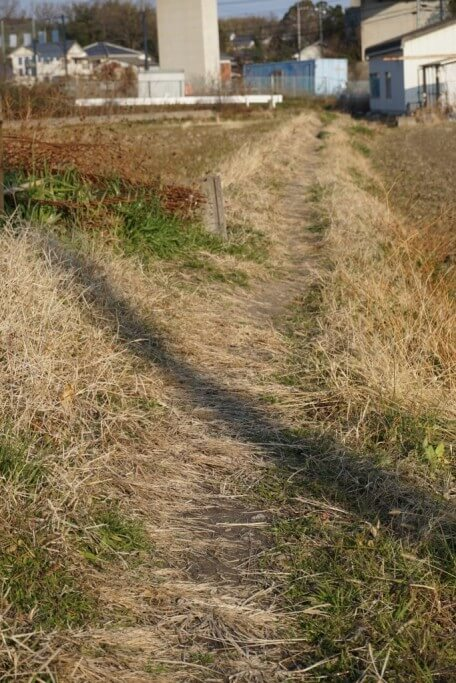 4番札所への遍路道 畦道