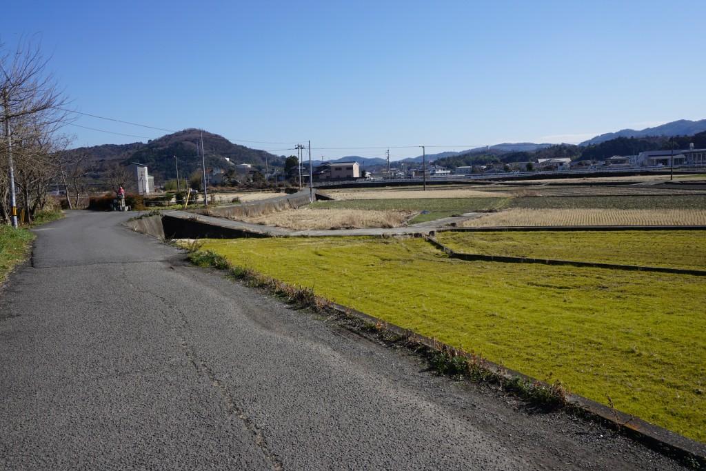 13番札所「大日寺」→14番札所「常楽寺」 田園道