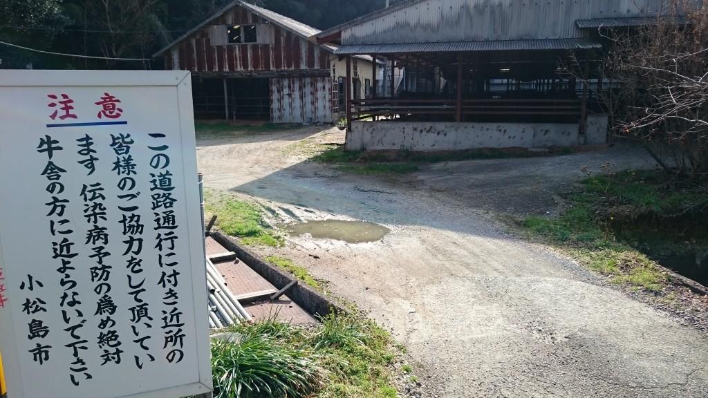 恩山寺 牛舎