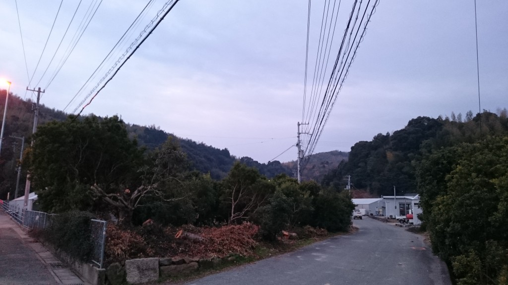 寿康康寿庵(法泉寺) 鶴林寺の山