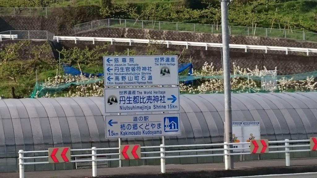 高野山参詣大橋 道路標示