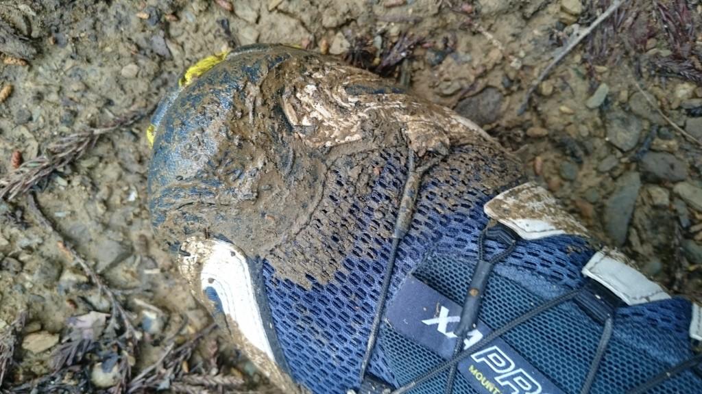 町石道 靴アッパー浸水