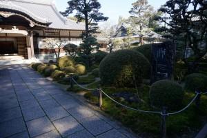 土佐国分寺 庭園 苔寺