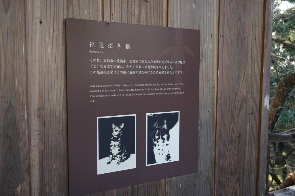 竹林寺 福運招き猫 掲示パネル