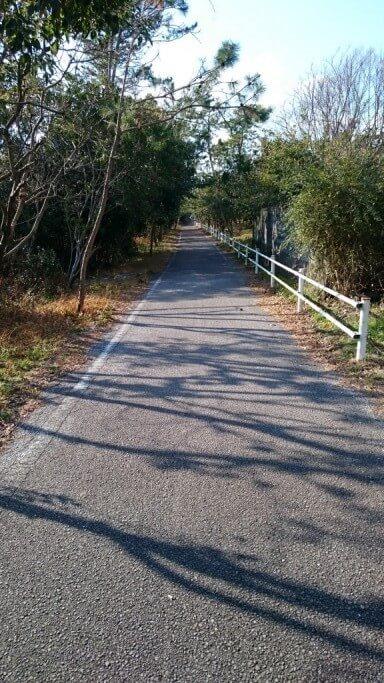 高知県赤野 自転車道