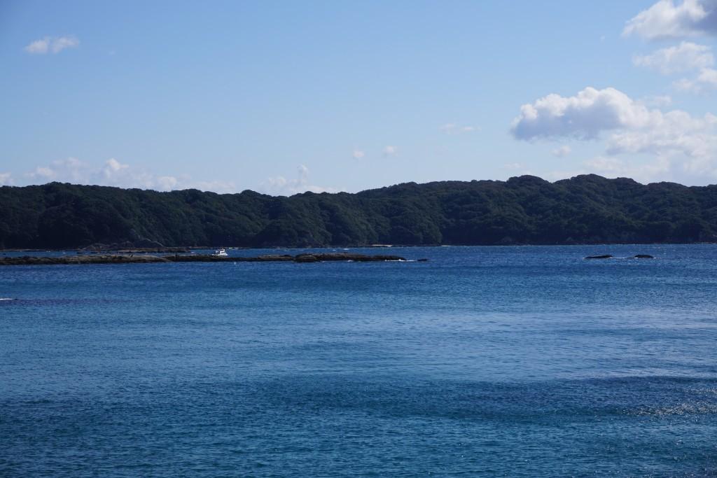 竜串海岸から見残し海岸 グラスボート