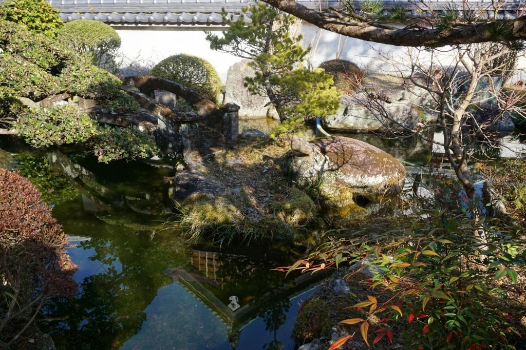 延光寺 境内 池 赤亀石像