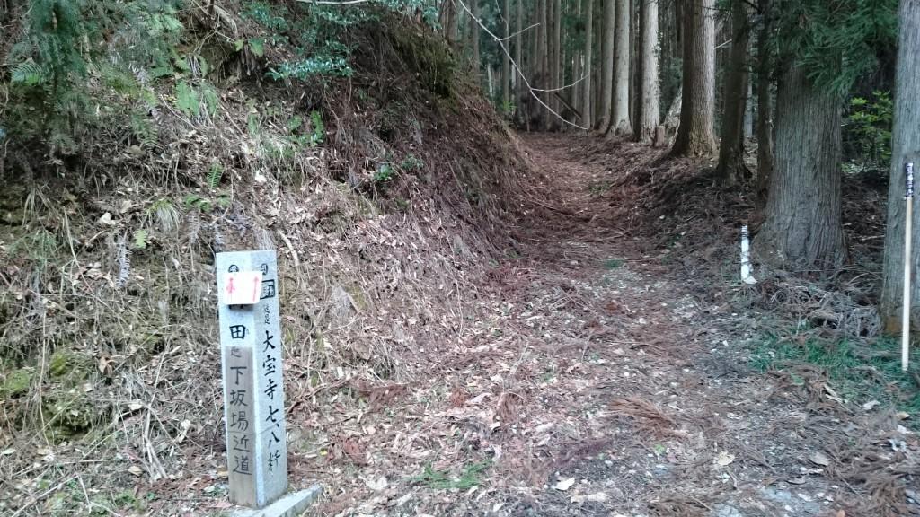 下坂場峠 未舗装路