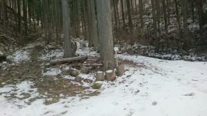 鴇田峠 未舗装路 積雪