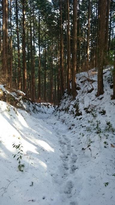 鴇田峠 未舗装路 積雪 足跡
