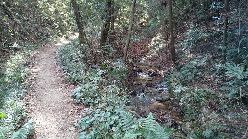 犬塚池 小川のほとり 未舗装路