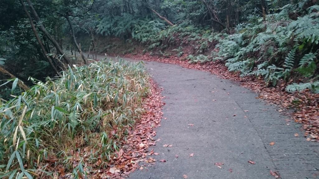 三角寺 登り坂 旧道舗装路