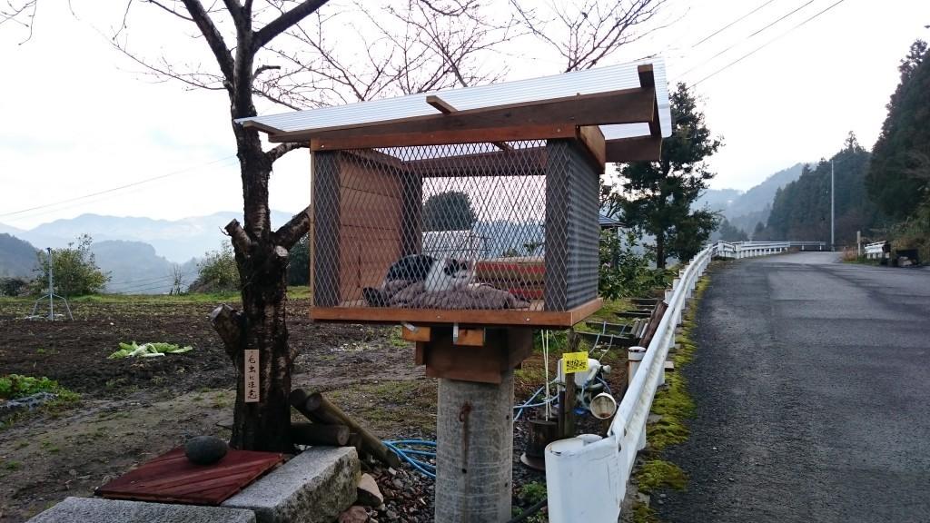 三角寺下り道 猫の家