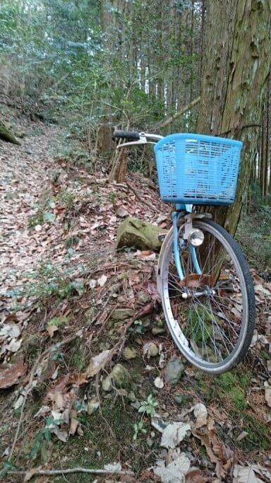 雲辺寺 遍路ころがし 未舗装路 放置自転車