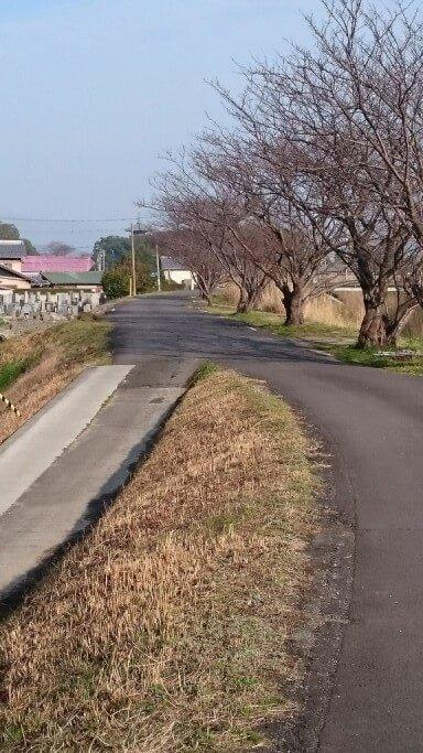 財田川 本山寺 五重塔