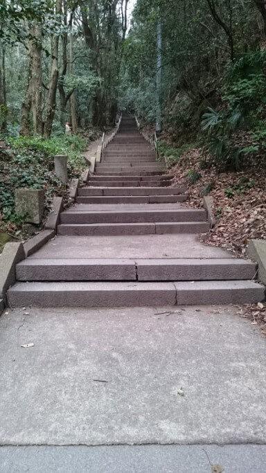 弥谷寺 山門後石段
