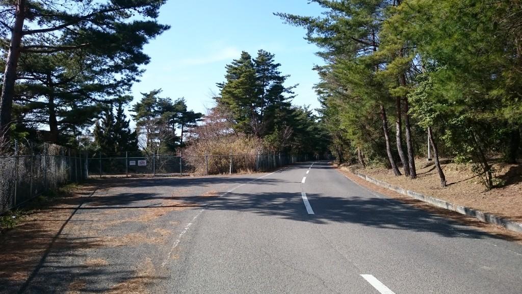白峯寺 未舗装遍路道