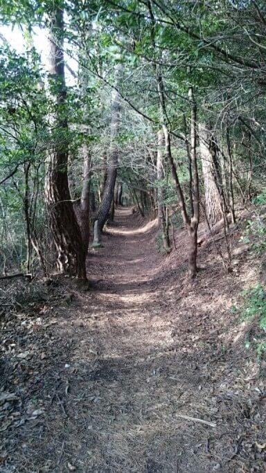 白峯寺から根香寺への遍路道