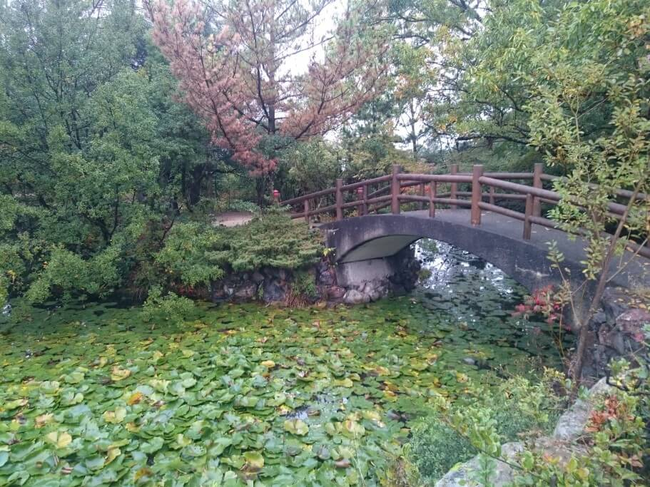 瑠璃宝の池 屋島