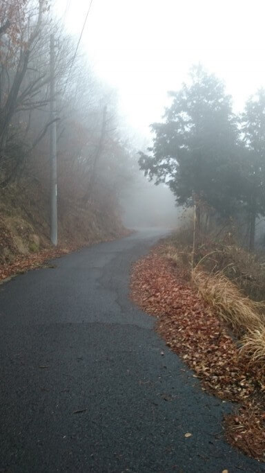 大窪寺への旧へんろ道