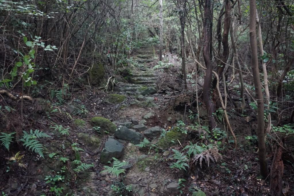天霧城への遍路道 石段
