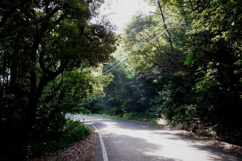 屋島周辺道路