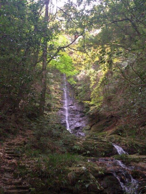 仙龍寺 滝