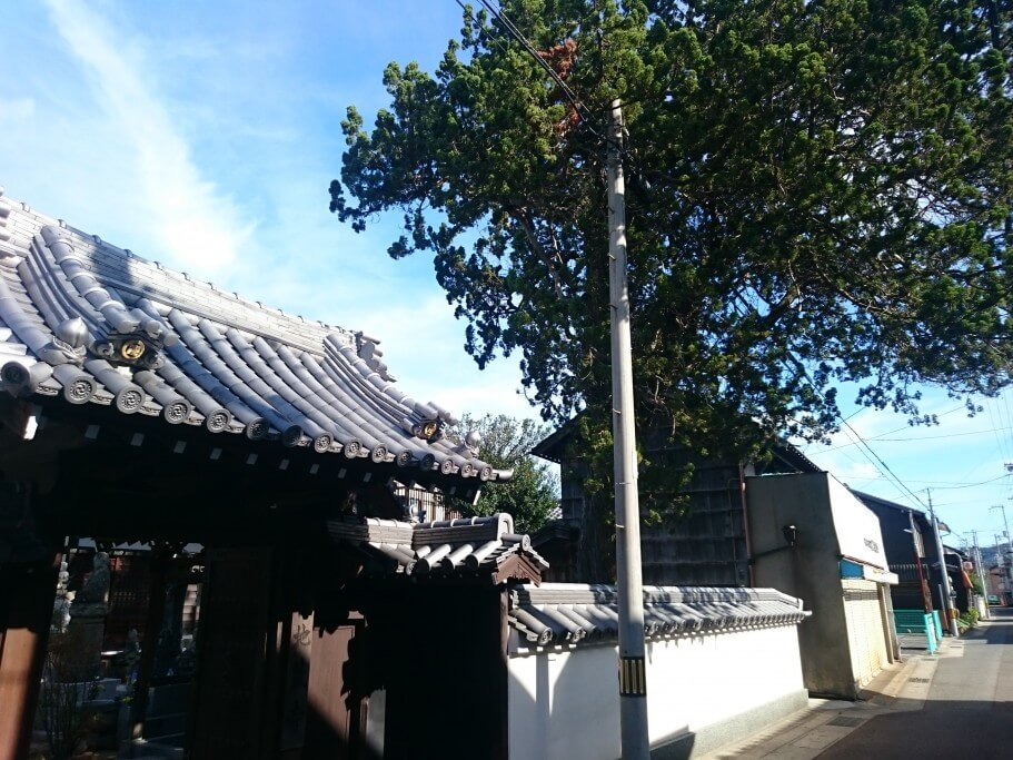 86番奥の院 地蔵寺巨木