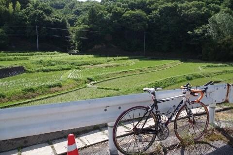 大窪寺への自転車旅 田園風景