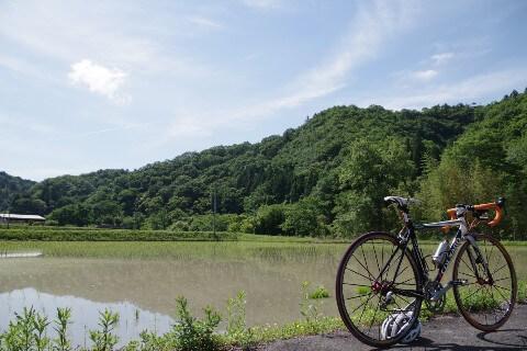 大窪寺への自転車旅 田園風景2