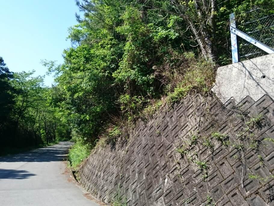 大瀧寺への道 道しるべ