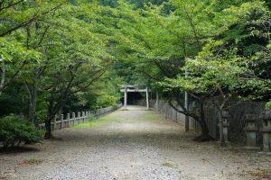 箸蔵寺 参道