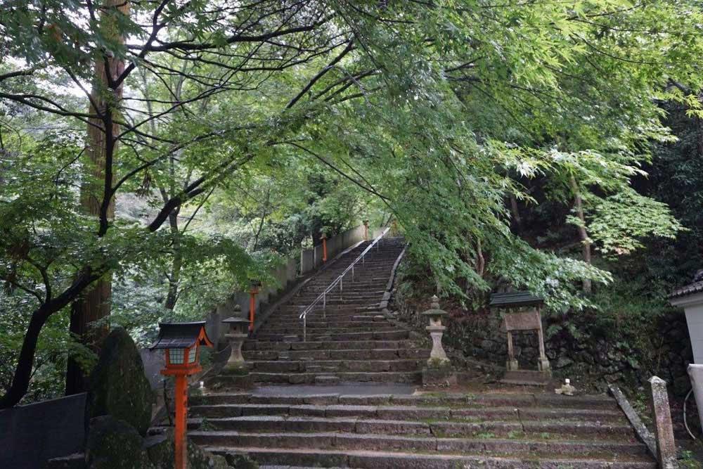 西山興隆寺 参道庫裏前 楓