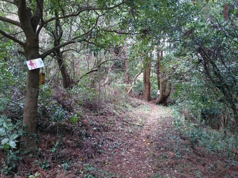 慈眼寺までの道 旧遍路道