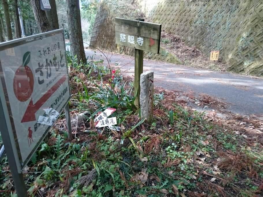 慈眼寺までの道 舗装路合流