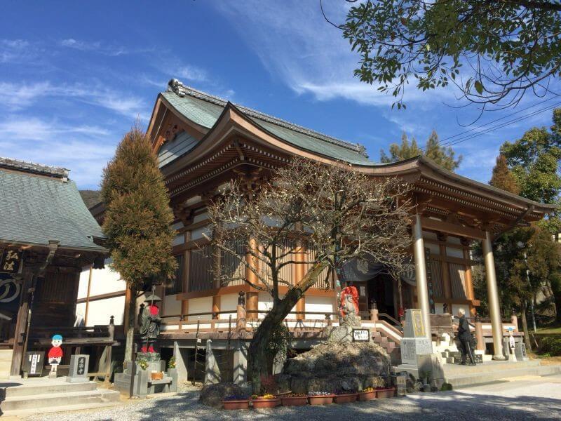 善楽寺 大師堂前にある梅の木