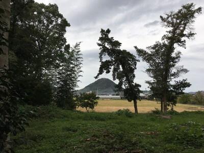 鰐河神社 背後の白山