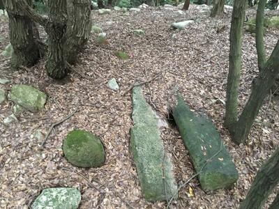 静薬師 周辺の古墳群