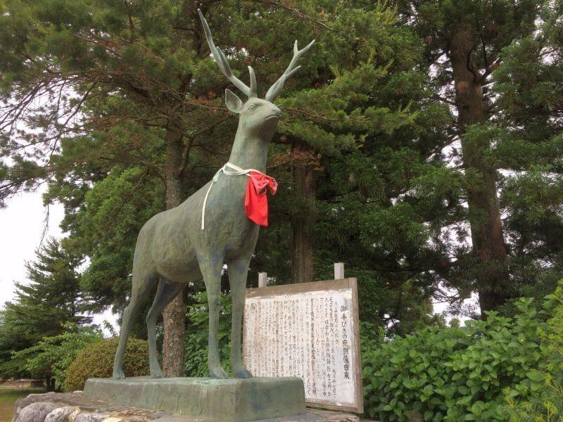 出石寺 お手引きの鹿