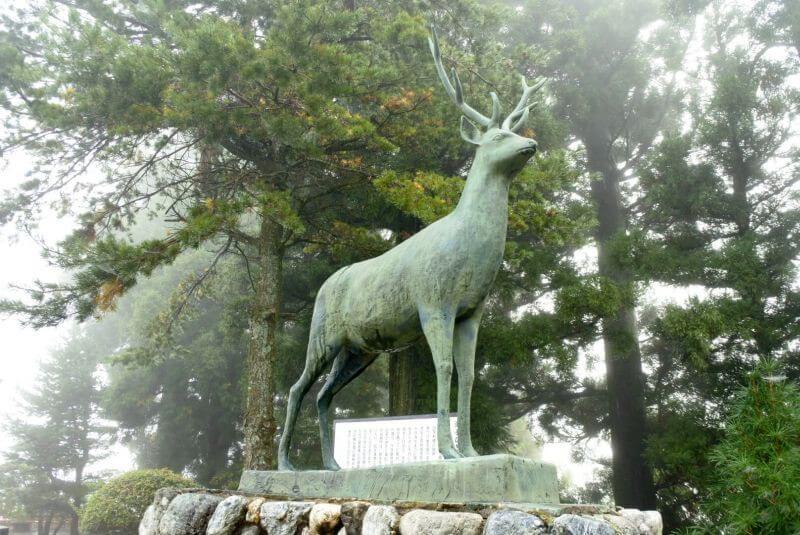 出石寺 御手引きの鹿
