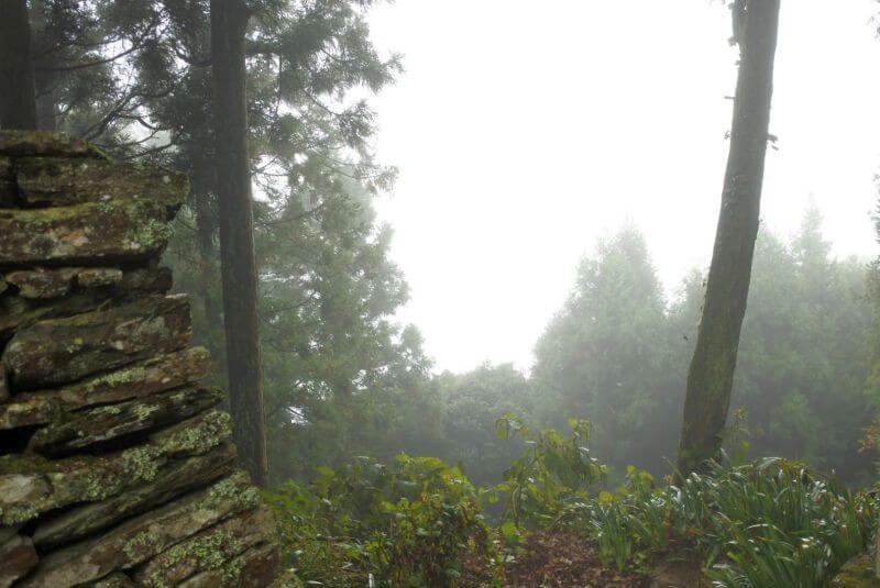 出石寺 本堂からの景色 霧