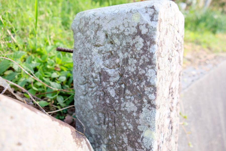 40番観自在寺→41番龍光寺 忘れられた遍路道 標石 右面上部