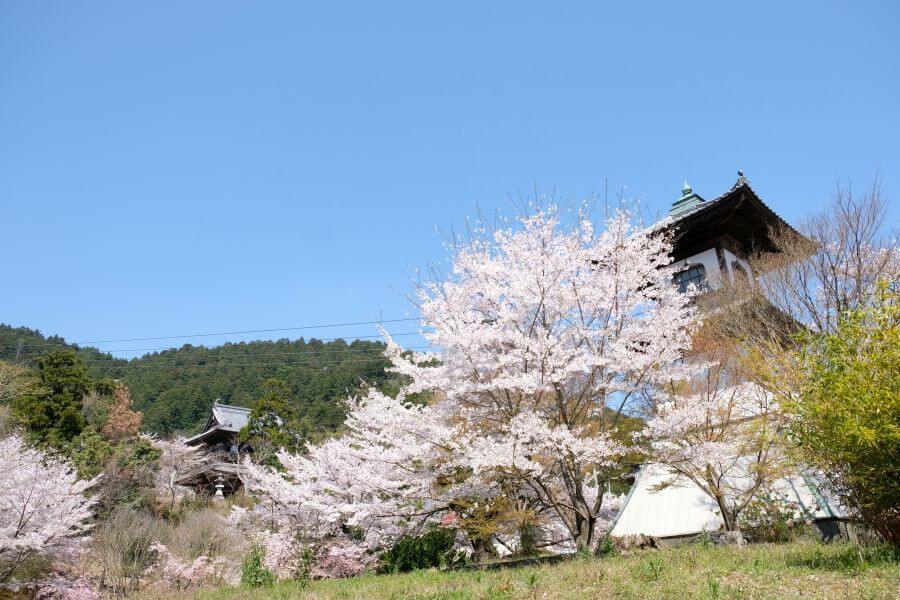 箸蔵寺 高灯籠