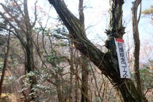 大滝山 阿讃縦走コース 道標