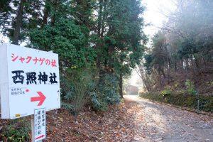 大滝山 山頂到着 西照神社裏参道
