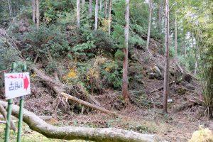 古目峠への古道 所々損傷