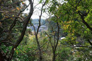 古目峠古道 高知県側 木々の間から見える甲浦集落