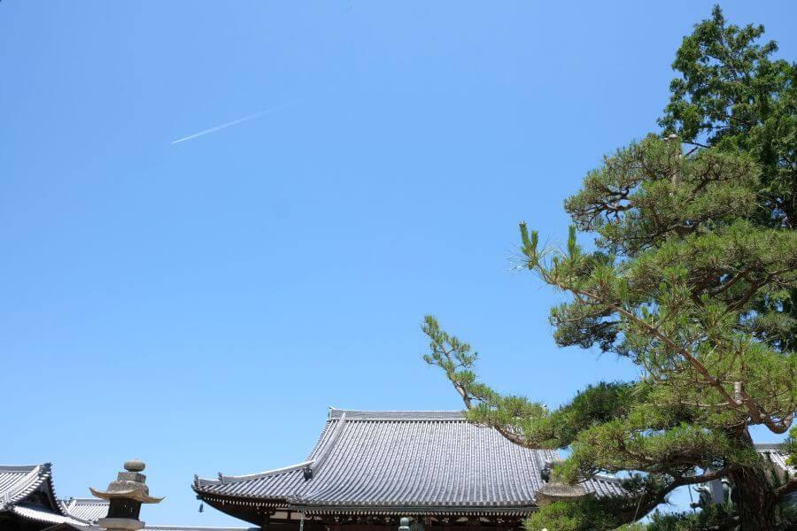 金倉寺 本堂青空 コントレイル