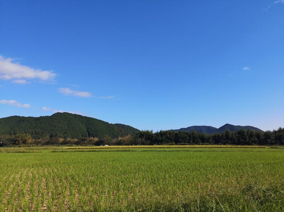 ミニベロ遍路 四万十川と山の間の農道