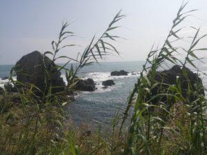 ミニベロ遍路 伊の岬